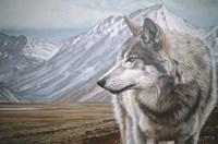 Distant Mountains Fine-Art Print