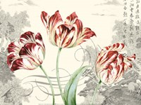 Imperial Tulips Fine-Art Print