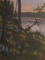 Lupines Fine-Art Print