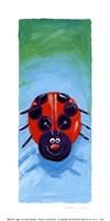 Bugs IV Fine-Art Print