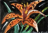 Tiger Lily Fine-Art Print