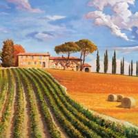 Colline Toscane (Detail) Fine-Art Print