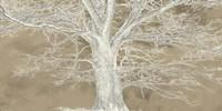 White Oak Fine-Art Print