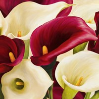 Calla Composition (Detail) Fine-Art Print