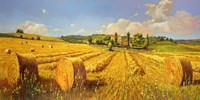 Campo in Toscana Fine-Art Print