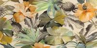 Wild Ibiscus Fine-Art Print