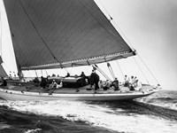 Yankee Cruising on East Coast, 1936 Fine-Art Print