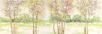 Bosco di Betulle II Fine-Art Print