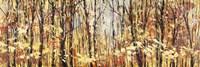 Nel Bosco Assolato Fine-Art Print