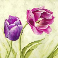 Tulipani Danzanti (Detail) Fine-Art Print