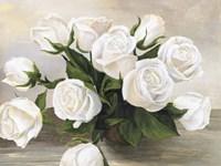 Vaso di Rose Fine-Art Print