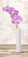 Orchid Arrangement Fine-Art Print