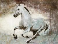 White Star Fine-Art Print