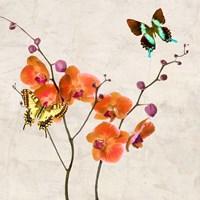 Orchids & Butterflies I Fine-Art Print