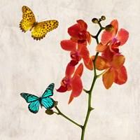 Orchids & Butterflies II Fine-Art Print