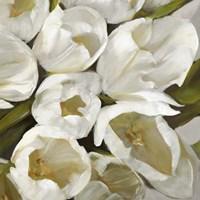 Bianco II Fine-Art Print