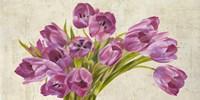 Tulipes II Fine-Art Print