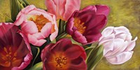 My Tulips Fine-Art Print