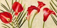 Red Callas Fine-Art Print