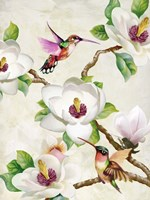 Magnolia and Humming Birds Fine-Art Print