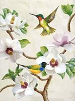 Magnolia and Birds Fine-Art Print