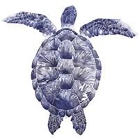 Marine Turtle I Fine-Art Print