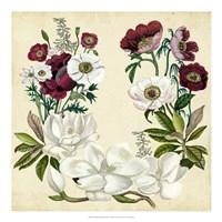 Magnolia & Poppy Wreath I Fine-Art Print