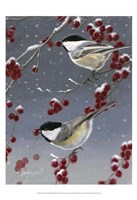Winter Chickadees II Fine-Art Print