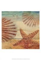 On Sandy Beach II Fine-Art Print