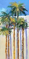 Shadow Palms I Fine-Art Print