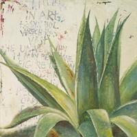 Aloe I Fine-Art Print