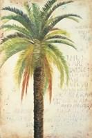 Palms & Scrolls II Fine-Art Print