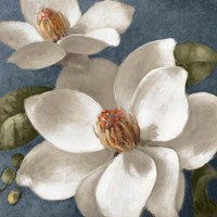 Magnolias on Blue I Fine-Art Print