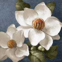 Magnolias on Blue II Fine-Art Print