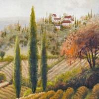 Tuscany Vineyard II Fine-Art Print