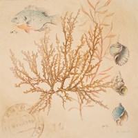 Coral Medley I Fine-Art Print