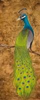 Peacocks I Fine-Art Print