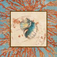 Coral Medley Shell I Fine-Art Print