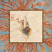 Coral Medley Shell III Fine-Art Print