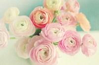 Blushing Blossoms Fine-Art Print