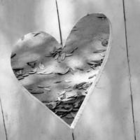 B&W Heart Full of Love Fine-Art Print