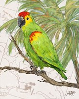 Another Bird in Paradise II Fine-Art Print