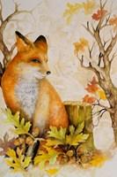 Mystic Woodland I Fine-Art Print