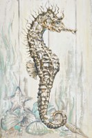Antique Sea Horse I Fine-Art Print