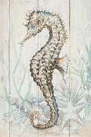 Antique Sea Horse II Fine-Art Print