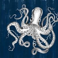 Underwater Creatures II Fine-Art Print