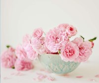 Petals and Porcelain Fine-Art Print
