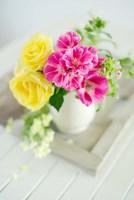 Fresh Morning Bloom Fine-Art Print