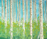 Vibrant Birchwood Fine-Art Print