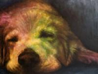 Dog Day Afternoon Fine-Art Print